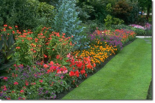 Follow These 10 Steps to a Magnificent Garden – From Cantiani Insurance Group