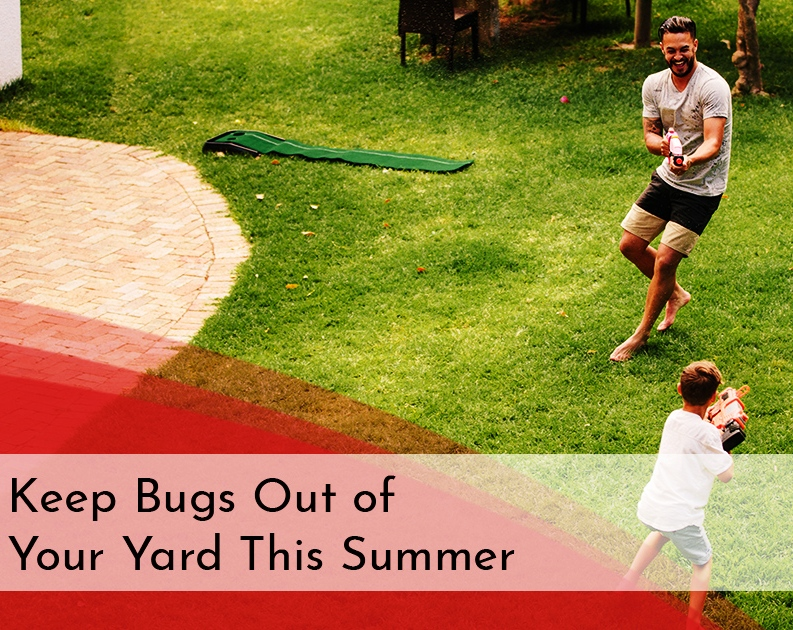 What's better than an outdoor summer party with friends and family? A summer party with friends and family—minus the bugs! It can be done and it doesn't have to involve toxic methods.